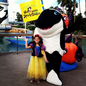 There are even a lot of fun opportunities to meet your favorite SeaWorld Characters!