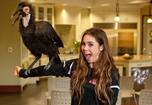 McKayla and Tufts the African ground hornbill