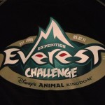 Expedition Everest Challenge 2011
