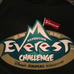 Expedition Everest Challenge 2012