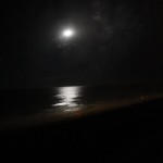 Moon reflecting off the ocean at Disney's Vero Beach Resort