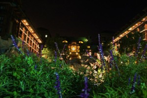 Wilderness Lodge exterior at night