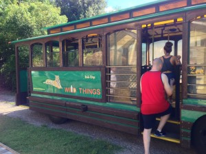 Wild Things Trolley Wild Things Zoo