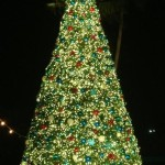 SeaWorld Christmas Tree