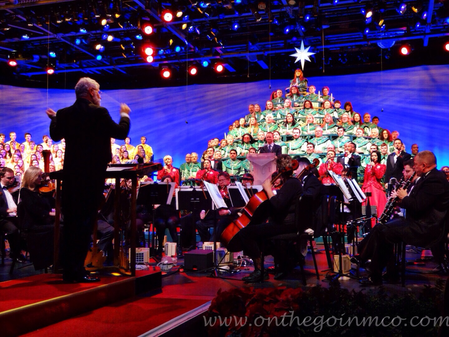 Wordless Wednesday Candlelight Processional
