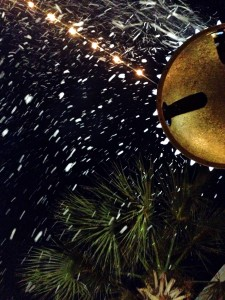 Now Snowing Nightly