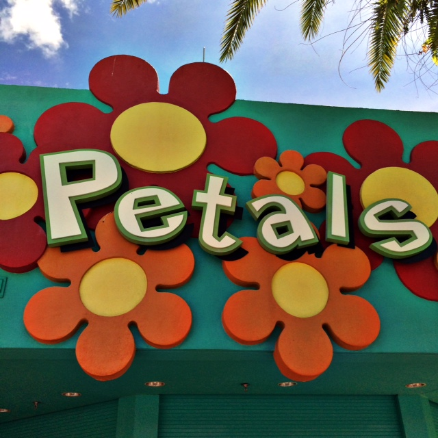 Pop Century Resort Petals