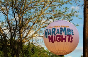 Harambe Nights