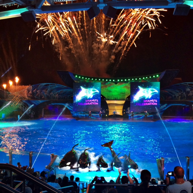 SeaWorld Orlando Summer 2014