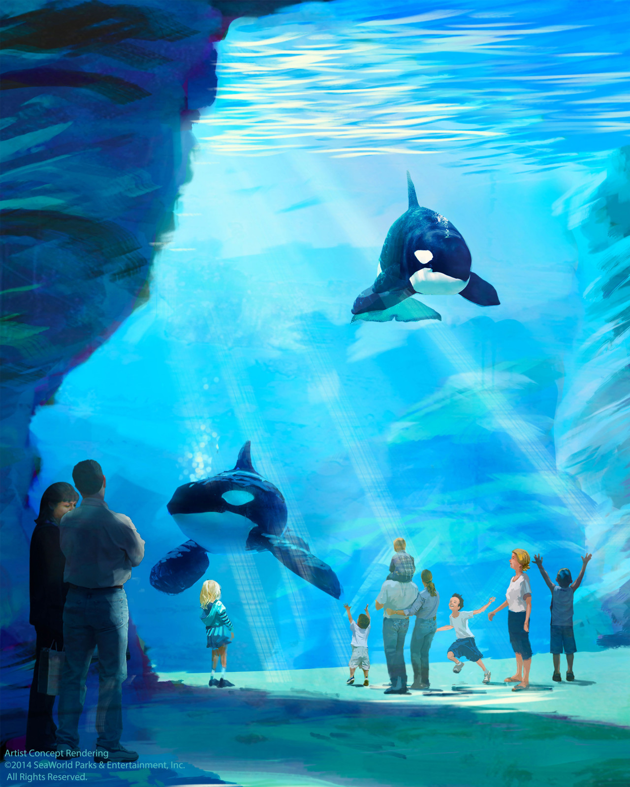 SeaWorld Orlando Killer Whale Announcement
