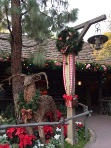 Frontierland decorations
