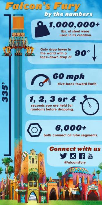 Falcon's Fury Infographic