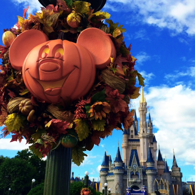 Wordless Wednesday 10 15 2014 Magic Kingdom Fall Mickey Pumpkin