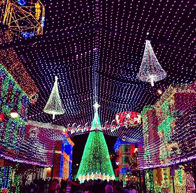 Wordless Wednesday Osborne Family Spectacle of Dancing Lights Christmas Walt Disney World