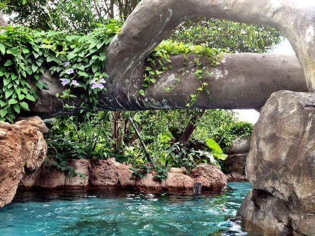 Discovery Cove Freshwater Oasis Trail