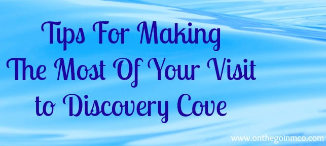 Discovery Cove Tips Header