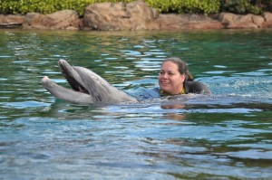 Discovery Cove Shelley Dolphin