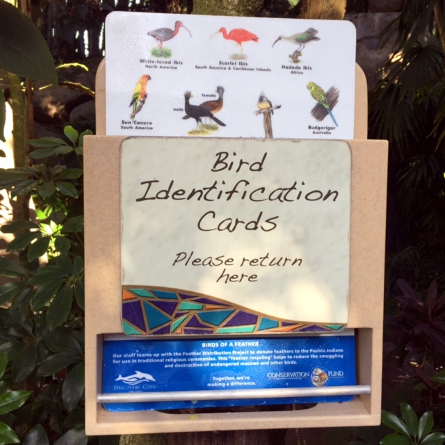 Discovery Cove Explorer's Aviary Guide