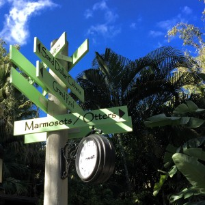Discovery Cove Signs