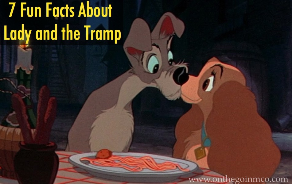 Fun Facts Lady and the Tramp D23 Fanniversary Home Edition