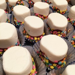 Walt Disney World Dipped Marshmallows