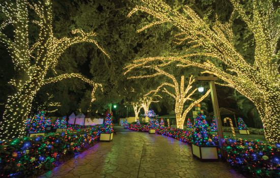 Christmas Town Returns to Busch Gardens Tampa  On the Go in MCO