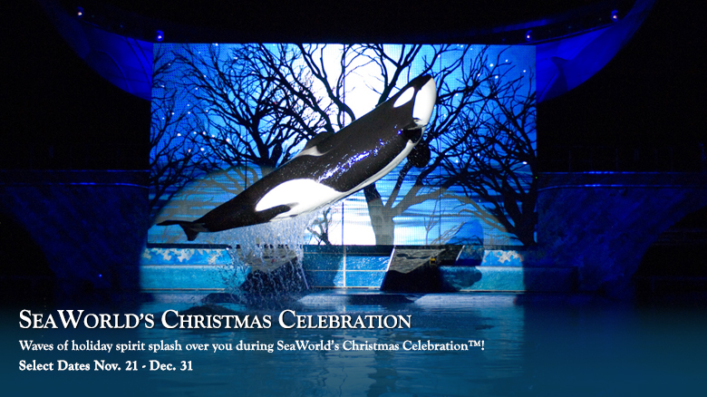 SeaWorld Orlando Christmas Celebration Shamu