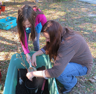 Florida Wildlife Federation Arbor Day
