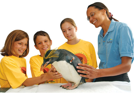 SeaWorld Orlando Summer Camps 2017 Resident Camps