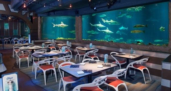 Sharks Underwater Grill SeaWorld Orlando Visit Orlando Magical Dining Month 2017