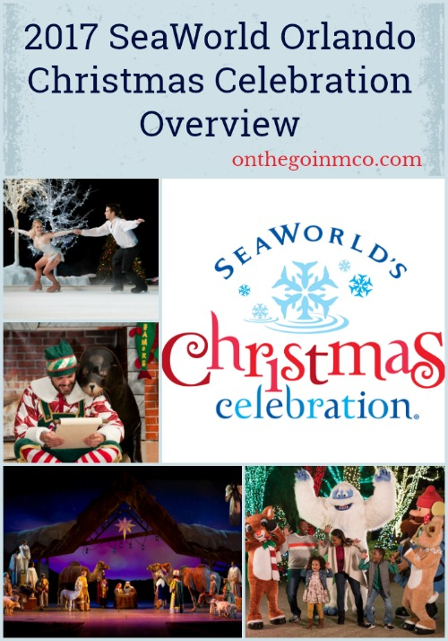 SeaWorld Orlando Christmas Celebration Overview Pinterest