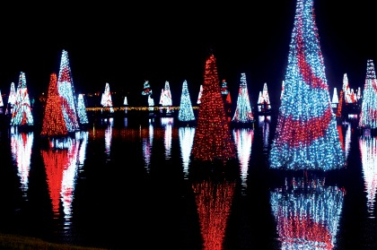 SeaWorld Orlando Christmas Celebration Sea of Trees