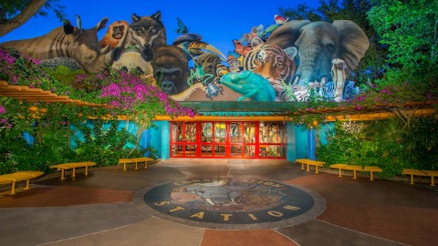 Disney's Animal Kingdom 20th Anniversary Celebration Details