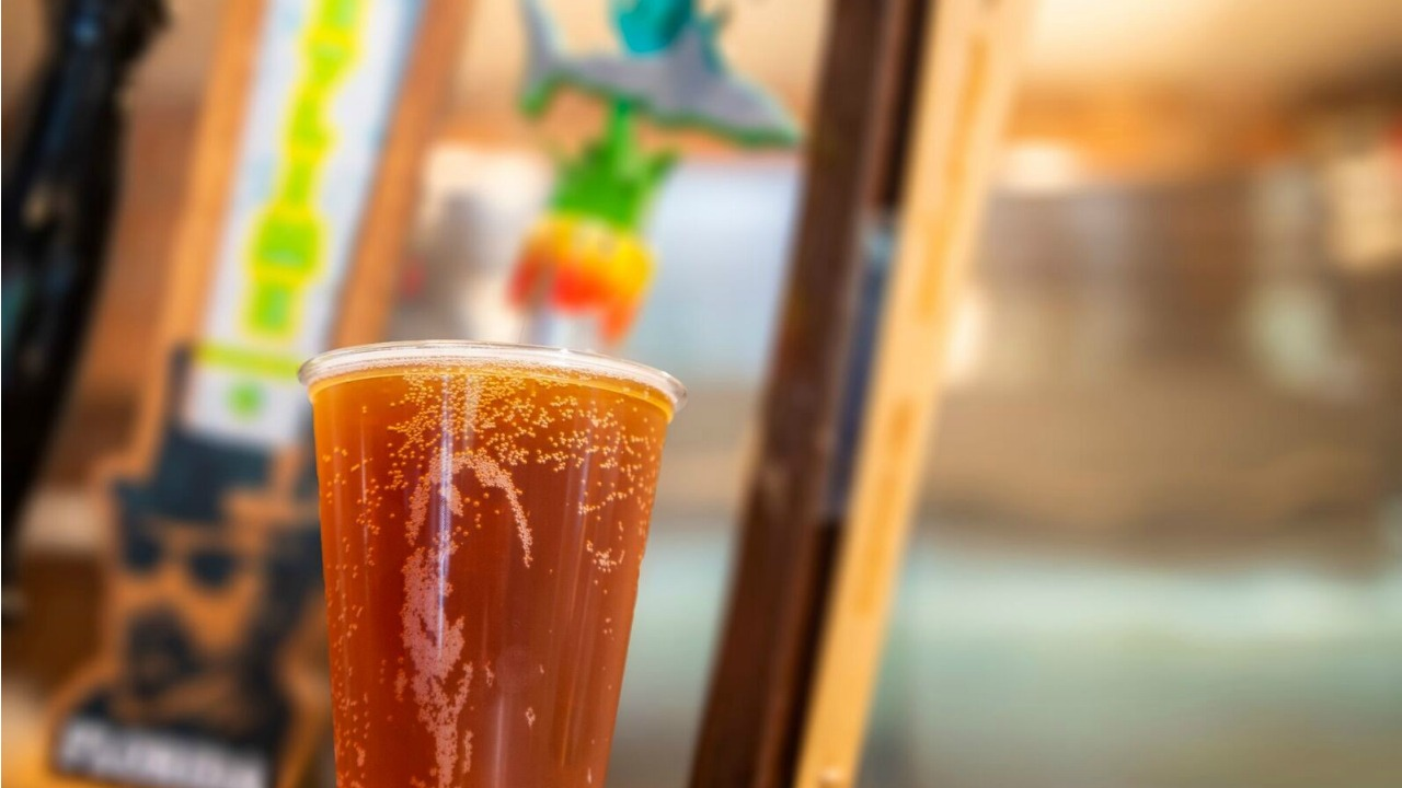 Theme Parks Thoughts When Summer Ends - Free Beer SeaWorld Orlando