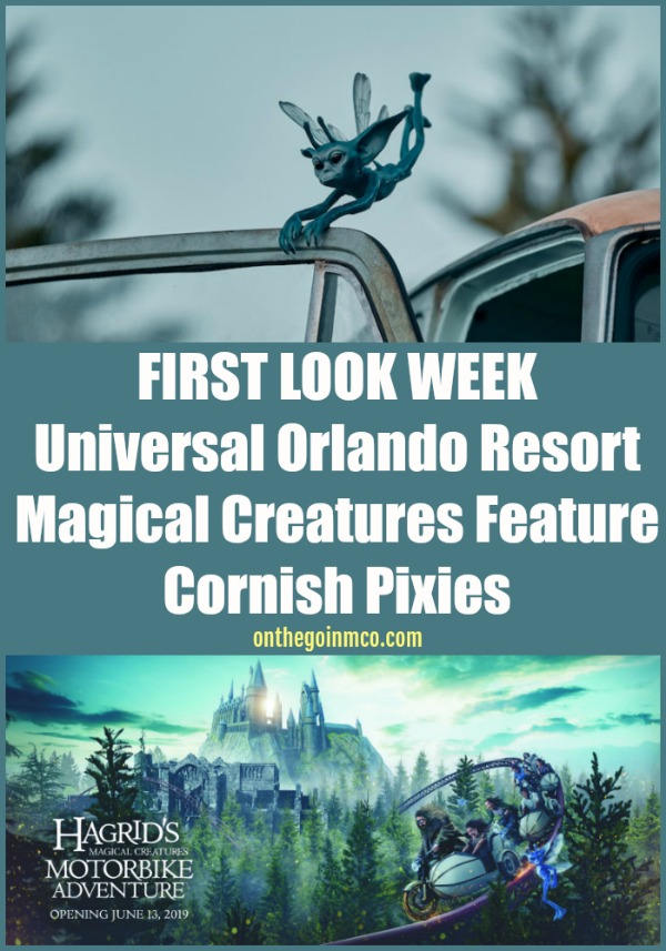 Hagrid's Magical Creatures Motorbike Adventure Universal Orlando Resort Universal's Islands of Adventure Wizarding World of Harry Potter Hogsmeade Harry Potter