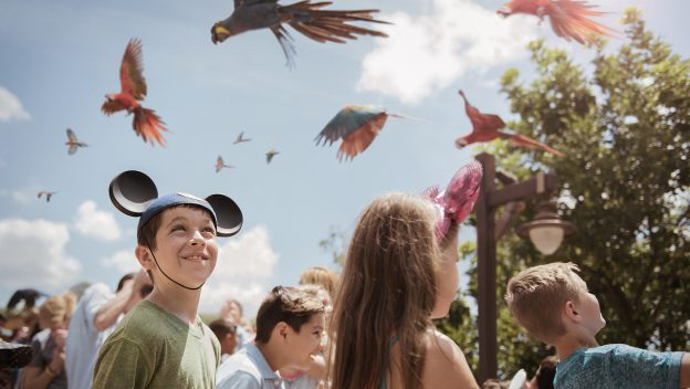 Party for the Planet 2019 Disneys Animal Kingdom Birds flying