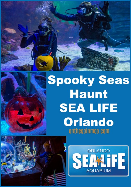 SEA LIFE Spooky Seas October 2019