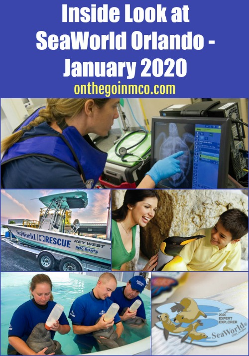 Inside Look at SeaWorld Orlando - January 2020