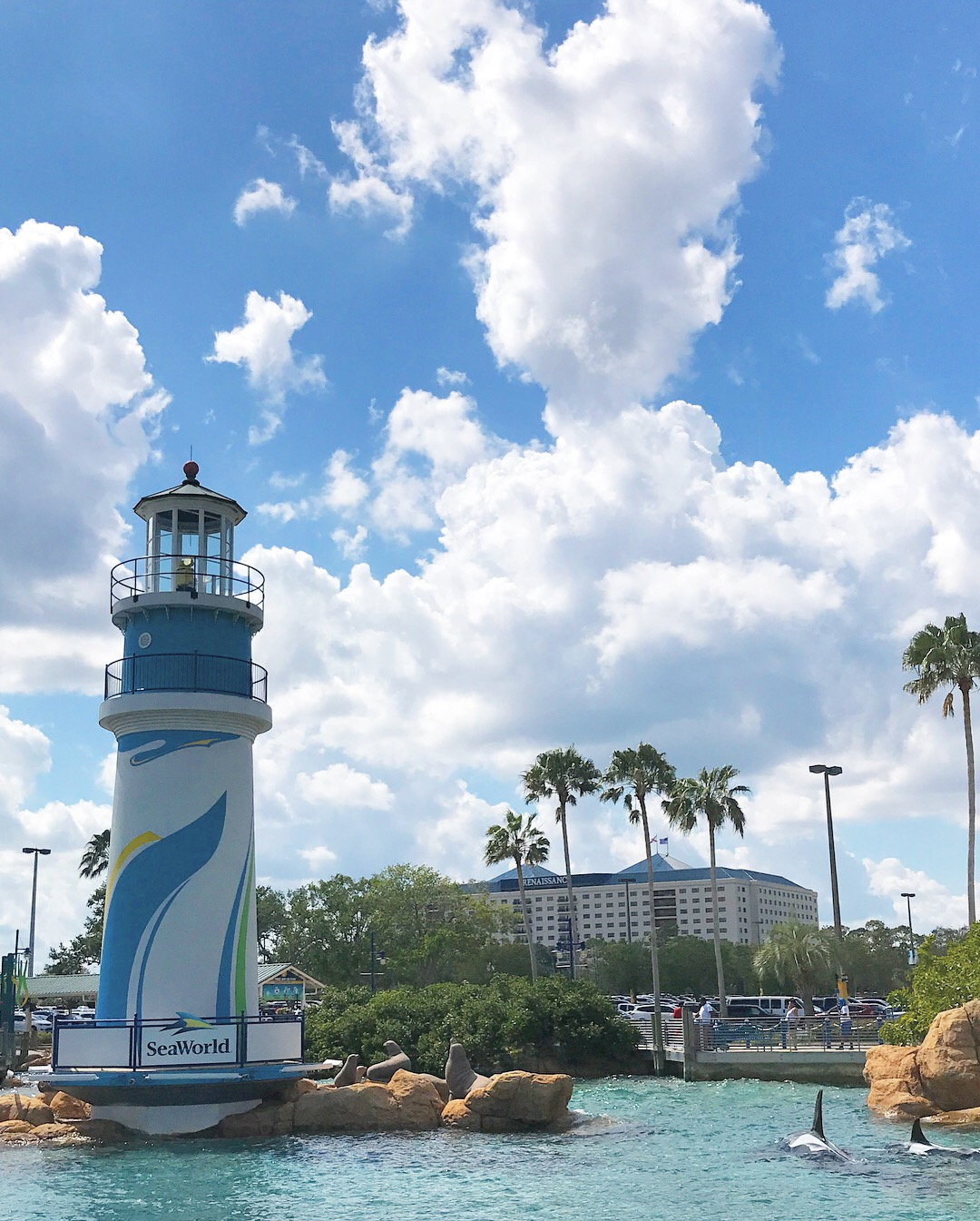 SeaWorld Orlando Welcome Harbour Vertical