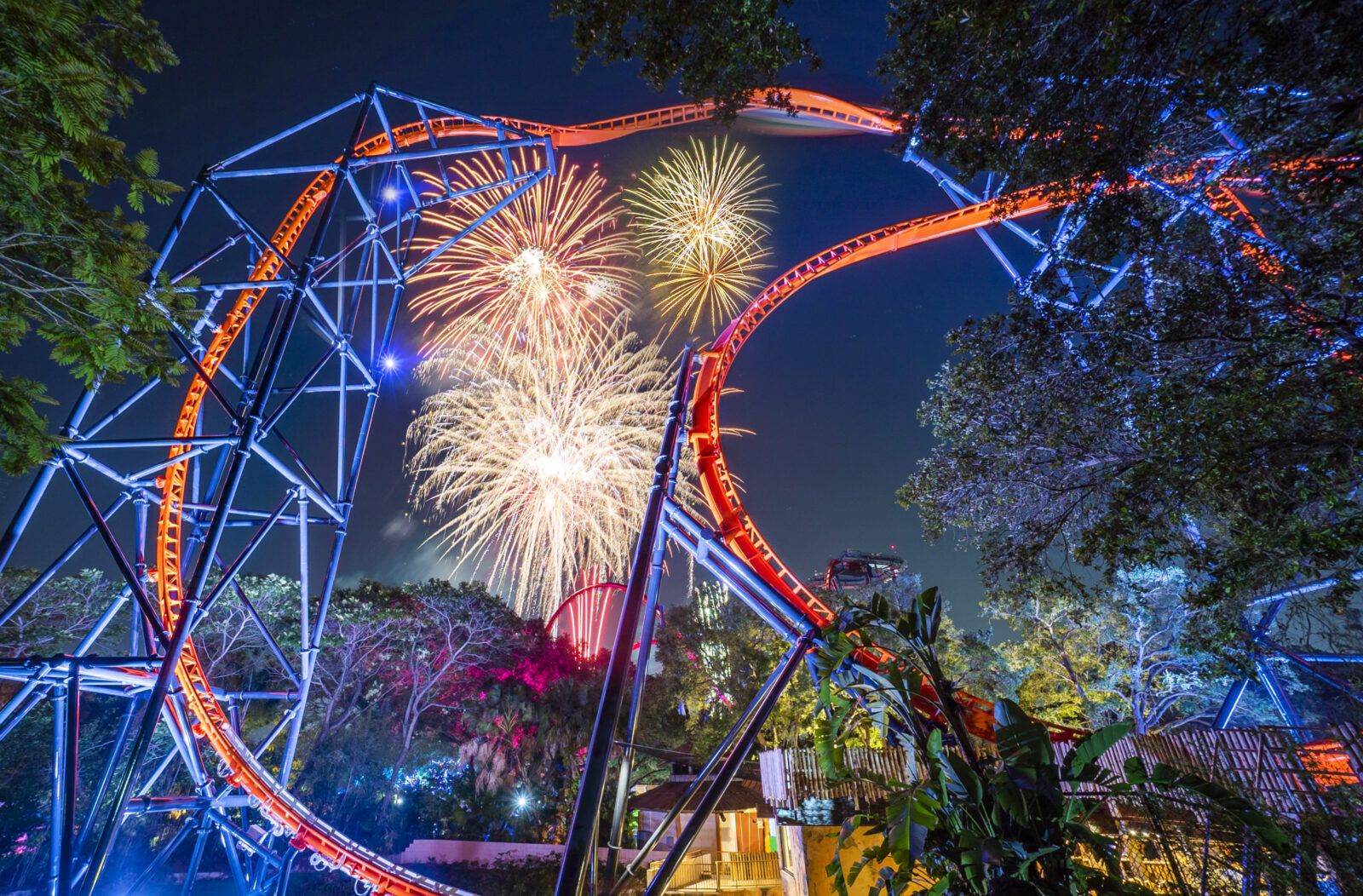 Busch Gardens Tampa Bay Summer Nights 2020