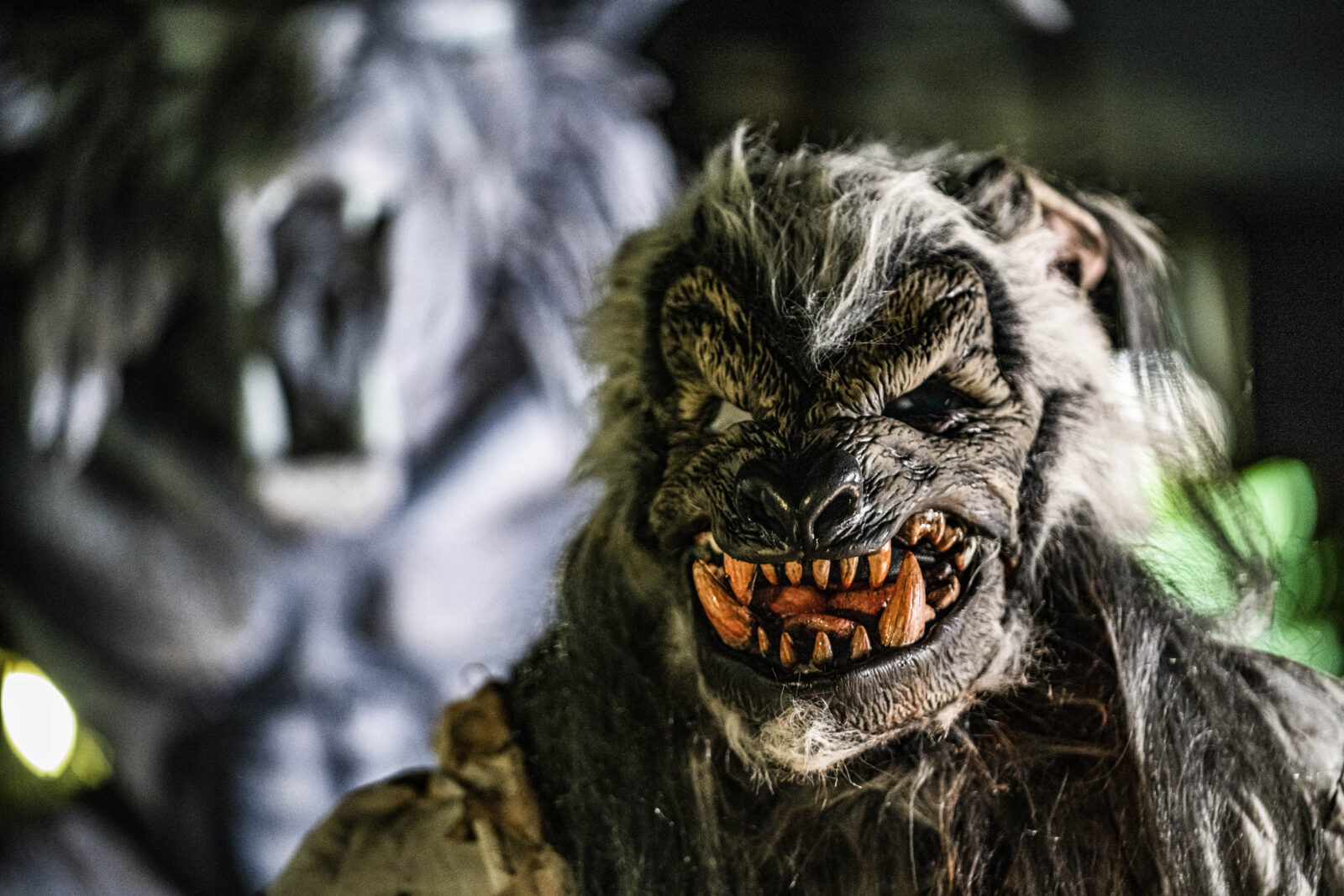 Howl-O-Scream 2020 Halloween Busch Gardens Tampa Bay