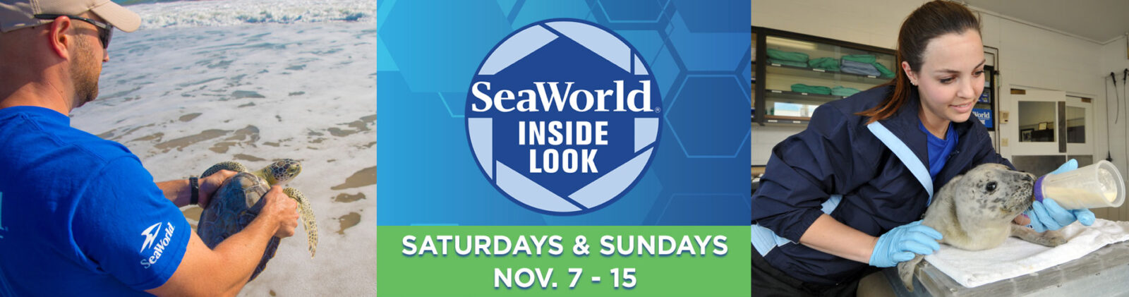 SeaWorld Inside Look Weekends November 2020