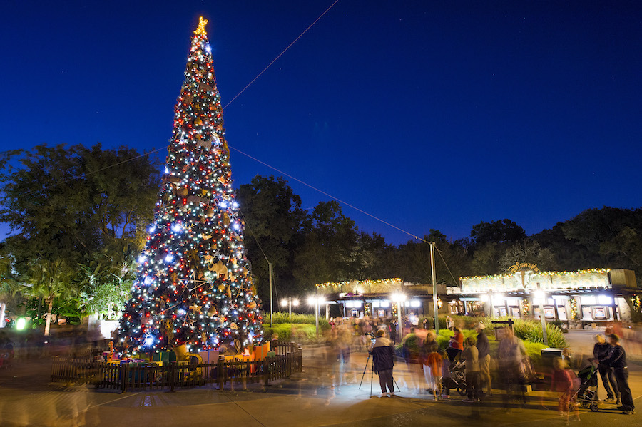 Holidays at Walt Disney World - Christmas at Disney's Animal Kingdom
