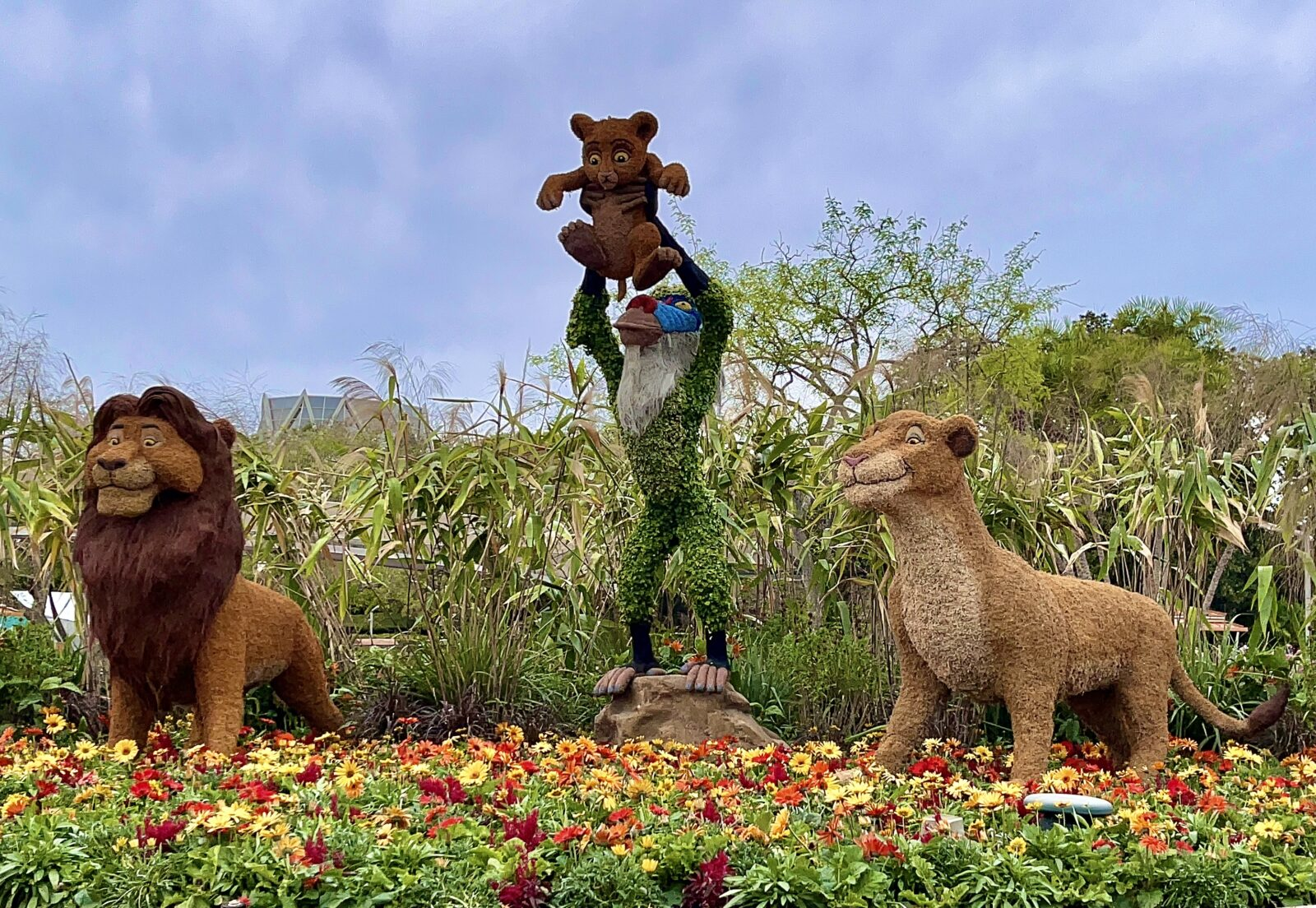 2021 Epcot Flower and Garden Festival Lion King Topiary